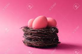 pink easter eggs pink easter eggs in nest on pink background stock photo picture and