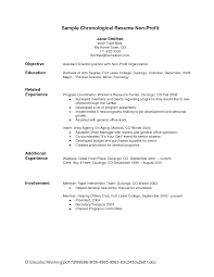 Non Profit Resume Pleasant Nonprofit Director Resume About Non Profit Resume Samples