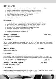 Government Sample Resume Resume Sample For Entry Level Job My Personal Cultural Identity