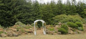 wedding arches for rent arboretum rental venues