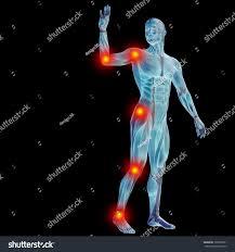 3d Human Anatomy High Resolution Concept Conceptual 3d Human Stock Illustration