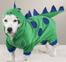Extra Large Dog Costumes Halloween Halloween Dog Costume Bumble Bee Large Dog Costume Large Fits 16