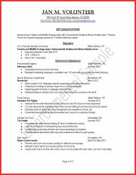Good Teenage Resume Examples by Resume Youth Group Leader 7981 Best Resume Career Termplate Free