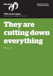 bureau veritas cameroun wwf and the loggers by just conservation issuu