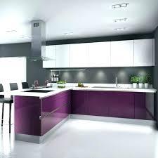 cuisine couleur aubergine meuble cuisine aubergine une cuisine aubergine pour ambiance chic