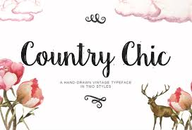 country chic script script fonts creative market