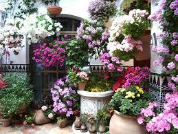 patio calle parras cordoba españa patios de cordoba pinterest