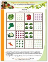 marvellous ideas raised vegetable garden layout marvelous design
