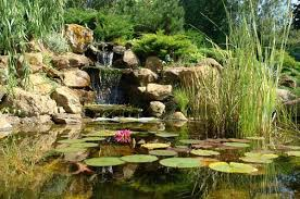 Backyard Waterfall Ideas by Bathroom Ideas Beautiful Bacyard Ponds Fish Pool Design With