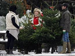 money woes no anthea turner and husband sell trees