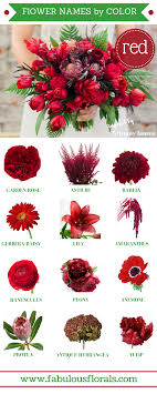 wedding flowers types different types of flowers with names meanings and types of