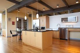 Lighting Universe Lighting Universe Kitchen Midcentury With Eichler Style Black Counters
