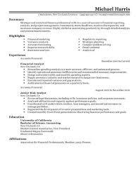 Resume For Professional Job by Sample Finance Resume Berathen Com