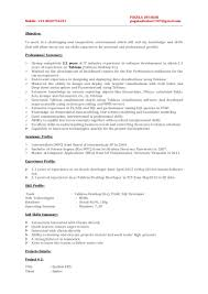 Roles And Responsibilities Of Net Developer Resume Tableau Resume