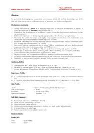 sample resume for oracle pl sql developer tableau resume