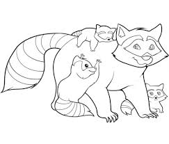 raccoon coloring pages pixelpictart com