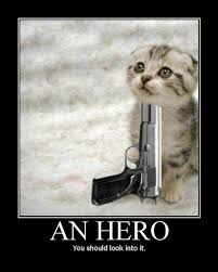 An Hero Meme - an hero cat macros