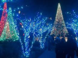 Botanical Garden Atlanta Lights Beautiful Christmas Display Picture Of Atlanta Botanical Garden