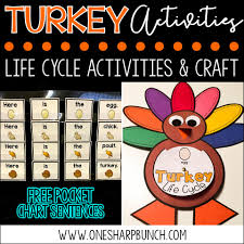 turkey games for thanksgiving turkey life cycle activities one sharp bunch