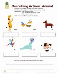 all about adverbs describing animal actions worksheet