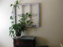 old window frame used as an indoor trellis for my plant home
