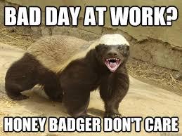 Bad Day At Work Meme - bad day at work honey badger don t care honey badger hatin