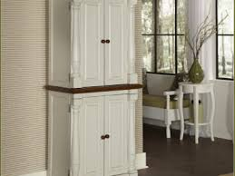 best tall kitchen corner cabinet with doors home design tall