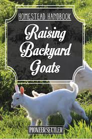 raising goats for milk meat and profit homesteading handbook