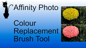 affinity photo colour replacement brush tool youtube