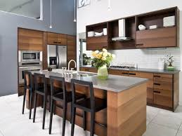 How Do You Build Kitchen Cabinets Ecofriendly Kitchen Healthier Kitchen Cabinets