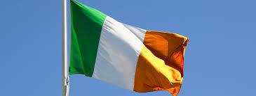 Flag Of Dublin Ireland Irish Flag Elmers Flag And Banner