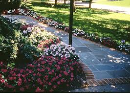 Front Of House Landscaping by Best Foundation Planting Ideas On Pinterest Front Flower Beds