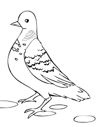free dove bird coloring page animal coloring pages of