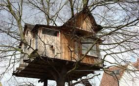Wheres the Best Tree House  Wonderopolis