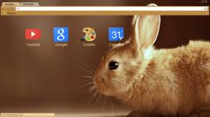 theme google chrome rabbit rabbit chrome themes themebeta