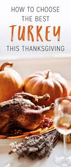 230 best celebrate thanksgiving images on turkey