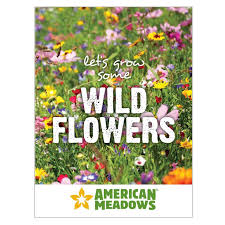 wildflower seed packets 40 best seed packet ideas images on seed packets to