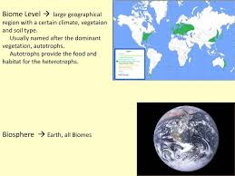 vegetaion images Module b unit 8 ecology mr mitcheltree ppt download jpg