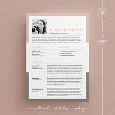 50 best resume cv template images on pinterest professional