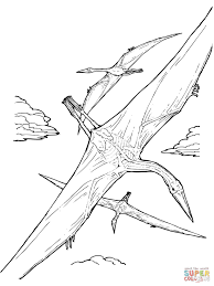 pterodactyl coloring page eson me