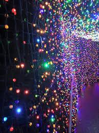 portland zoo christmas lights christmas lights card and decore