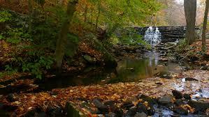 Pennsylvania scenery images Fall waterfall and creek jpg