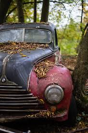 car yard junkyard free images tree old rust autumn abandoned nostalgia