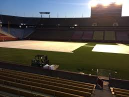 cyclone turfgrass on well flooring is stage and