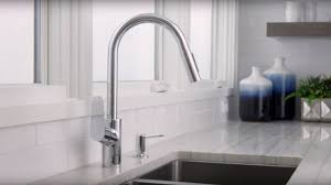 Water Ridge Pull Out Kitchen Faucet Hc Kitchen Faucet Inspirations Also Hansgrohe Faucets Inside