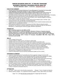 Sample Analyst Resume by Business Analyst Resume Summary Examples 12 Best Business Analyst