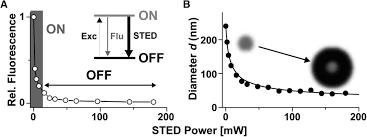 super resolution optical microscopy of lipid plasma membrane