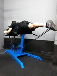 elite glute ham and reverse hyper bench web price only movestrong