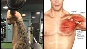 Bench Press Shoulder Impingement The 7 Deadliest Bench Press Mistakes Fitness And Power