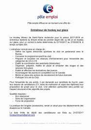Cv Quebec by Nathalie Janil Natchos11 Twitter